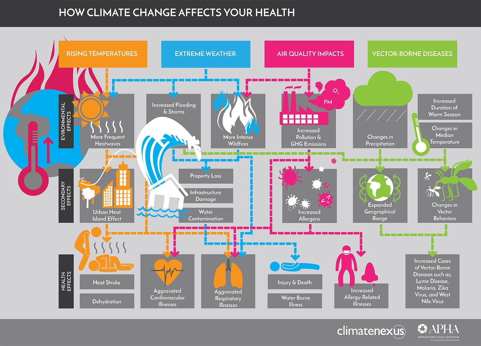 Courtesy of American Public Health Association.